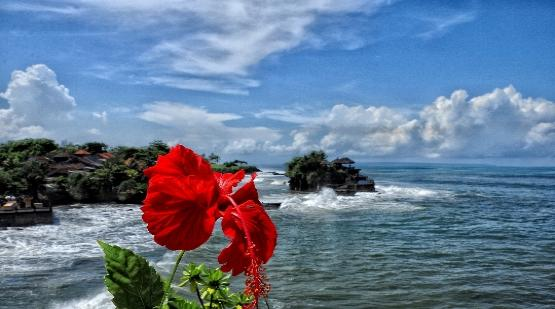 10-Thousands-of-Tourists-Was-Visit-Tanah-Lot-After-Reopening.html